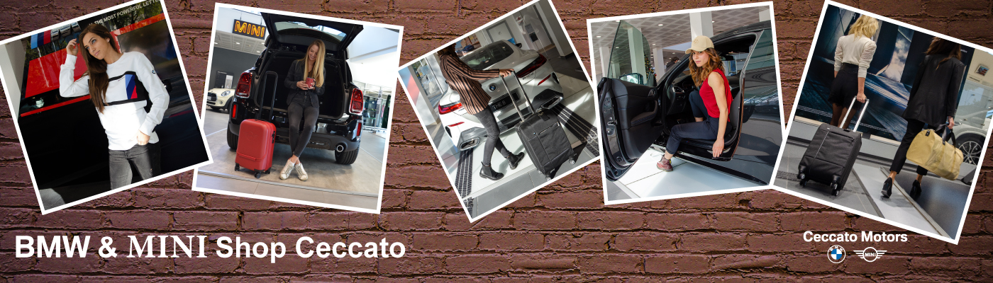 Ceccato Motors E-Commerce